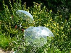 Effets de serre (Petit Page) Tags: green vert 日本 umbrellas campagne takayama japon kasa verdeparapluies