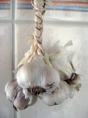 Braided Garlic