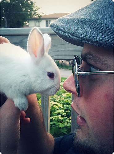 FACE TO FACE BUNNIES