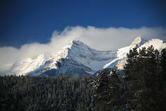 Cloudy Victoria Peak at Lake Louise (laszlo-photo) Tags: winter sky snow canada cold ice weather day victoria unesco pines alberta banff lakelouise victoriapeak banffnationalpark