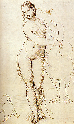 1507  Raphael    Leda and the Swan  Pen and dark brown ink  Londres, The Royal collection