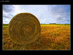 Bales of Hay - Warnambool (sachman75) Tags: clouds landscape farm straw dry australia victoria round land hay bales 1022mm circular warnambool interestingness205 i500 40d bwpolarizer
