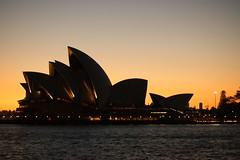 Sydney Opera House at sunrise (RachaelMc) Tags: sunlight beautiful sunrise dawn golden early harbour sunday sydney australia nsw operahouse sydneyharbour sydneyoperahouse rachaelmc rjmcdiarmid