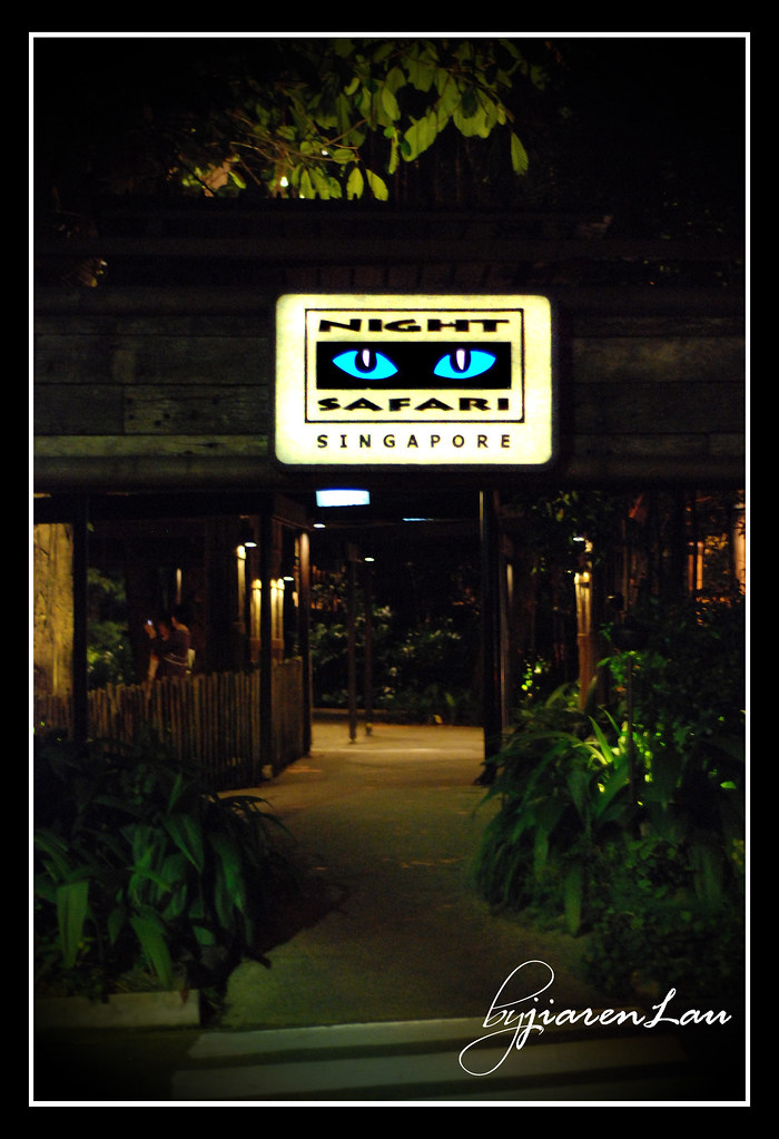 The Night Safari, Singapore.