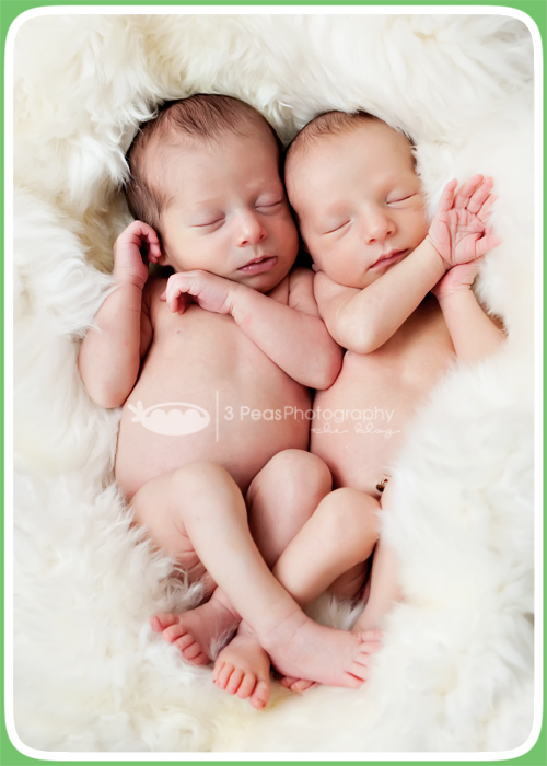 Twins-2688.jpg