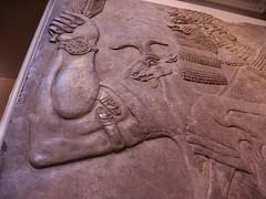 BM_ANE278 (sipazigaltumu) Tags: london museum ancient near antique east bm british mesopotamia basrelief reliefs assyrian antiquit ashurnasirpal antiquite ashurbanipal assurbanipal orthostat assurnasirpal orthostate tiglathpilesar tiglatpilesar tiglatpileser