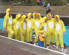 Nine ducks and a little duckling.