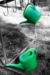 (eeviko) Tags: bw white black green cemetery graveyard finland grey wateringcan wateringpot wateringcans wateringpots