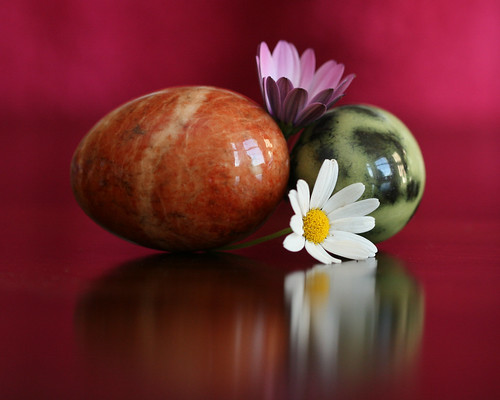 Still Life - Stone eggs and daisies