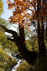 ヤンベタップ川