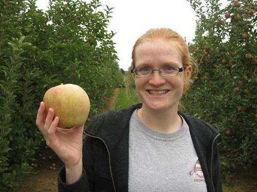 Apples - Rebecca