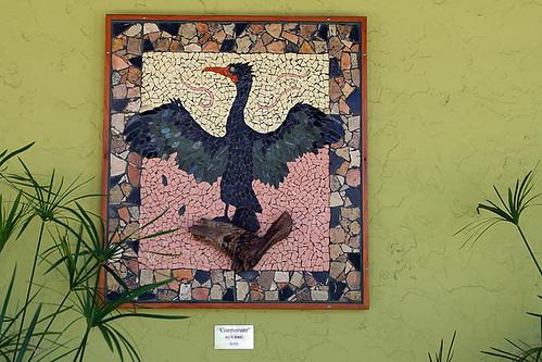 Cedar Keyhole's Cormorant