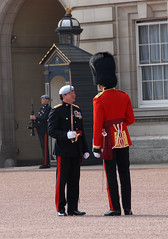 Img0033818e (veryamateurish) Tags: army military ceremony parade buckinghampalace britisharmy changingoftheguard queensguard royalguards grenadierguards guardsdivision changingtheguard newguard guardmounting