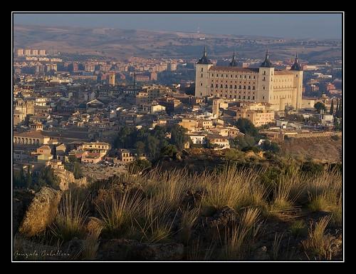 A la sombra del Alcázar