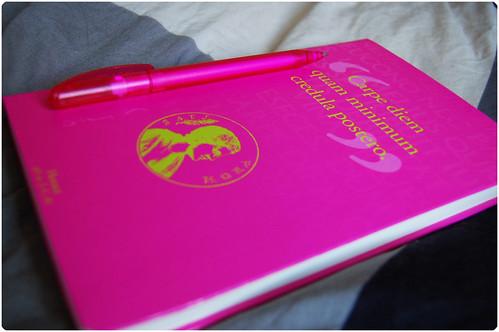 Carpe Diem Diary (Copyright Hanna Andersson)