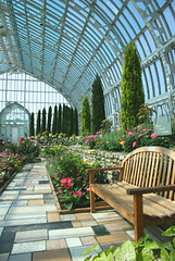 Commercial Glass Greenhouses