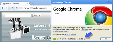pre-beta Google Chrome 2.0