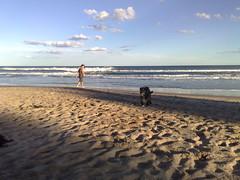 Beach near Tim's place