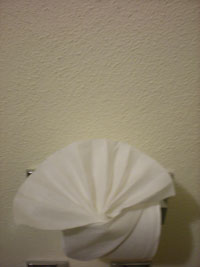 Mexican TP Folding