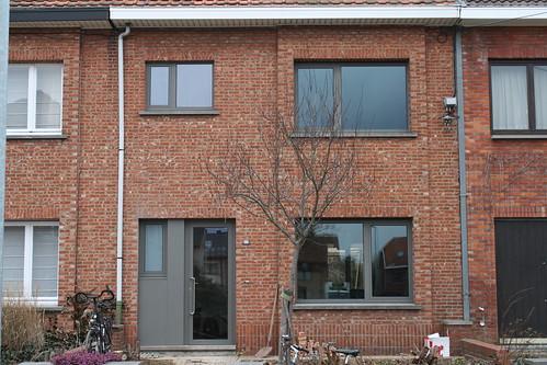 Bruineveld_20090209 021