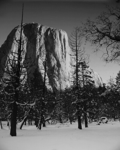 Photo of the Day: El Capitan by Robert Pearce