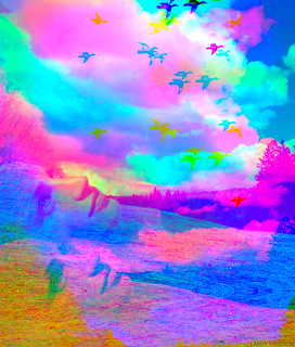 LARRY CARLSON, COLORIZED AFTERNOON, c-print, 30x34in., 2009.