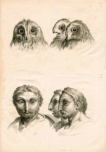 019-Le Système de Lebrun sur la Physionomie 1806