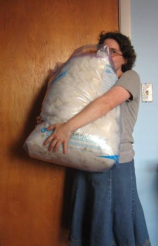 cormo fleece, to scale