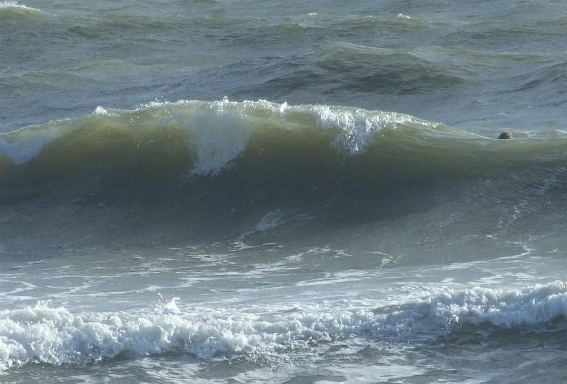 wave surf 08