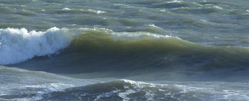 wave surf 02