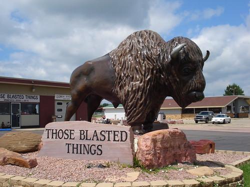 Giant Buffalo