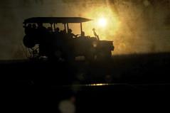 Vota por mi / Vote for me (rafallano) Tags: africa water animals de la reina hole 4x4 rover holes safari explore southern zebra land fields afrika sur concurso animales dada rafael rafa camps landrover namibia fnac facebook llano reserva sabana prados voteforme saffari desacato kunene concesión nacktefrau sabanna rafallano rafaelllano votapormi safarispornamibiasafarispornamibiasafarispornamibiasafarispornamibiasafarispornamibiasafarispornamibiasafarispornamibiasafarispornamibiasafarispornamibiasafarispornamibiasafarispornamibiasafarispornamibiasafarispornam africaencocheafricaencocheafricaencocheafricaencocheafricaencocheafricaencocheafricaencocheafricaencocheafricaencocheafricaencocheafricaencocheafricaencocheafricaencocheafricaencocheafricaencocheafricaencoche safariafricagamesafarissafariafricagamesafarissafariafricagamesafarissafariafricagamesafarissafariafricagamesafarissafariafricagamesafarissafariafricagamesafarissafariafricagamesafarissafariafricagamesafarissafariafric