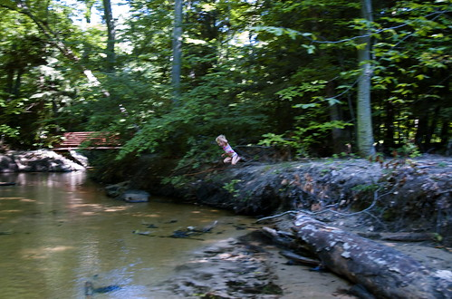 Afternoons at the creek