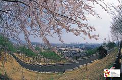 Korea_Suwontower() (Koreabrand-03) Tags: de republic south korea na coree republique   coire   poblacht