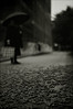 Autumn in Milano (Mayastar) Tags: rain moody autunno pioggia oscurita cedri vialetto giornateuggiose nikonaf50mmf14d nikond300 mayastar autumninmilano ibambiniqualchegiornofascuotevanoiramideglialberiescendevaunacascatadipollinegiallocomefosseunfumogeno quelcielocosibiancocit standingandstaring hosempreadoratoqueicosichesembranopiccolepignemachepoibohforsesongemmeperoinautunnommhmasonogiallielascianotuttaunapolverinaluminosissima
