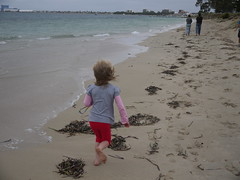 wind (-mariko) Tags: ocean storm seaweed beach girl childhood sand waves child play footprints run chase playful beachplay