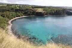 Honolua Bay (Dan Stanyer (Northern Pixel)) Tags: ocean travel canon landscape outdoors island hawaii bay paradise snorkel pacific scenic maui 7d hawaiian tropical destination honolua canonefs1585mmf3556isusm