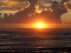 IMG_2979 (IanLudwig) Tags: old canon hawaii with taken powershot kauai hawaiian hawaiikai bigislandhawaii hawii hawaiibeach a620 hawaiicondo hawaiis kauaihawaii hawaiivolcano hawaiipictures konahawaii hawaiiisland travelhawaii kauaibeach alohahawaii my kauaiisland hawaiitour hawaiibeaches kauaivacation hawaiiactivities kauaitravel weddinghawaii hawaiiislands hawaiisurf hawaiihilo hawaiihotel kauaivacationrental vacationhawaii hawaiihotels northshorehawaii hawaiimap hawaiiluau kauaicondo hawaiiweather hawaiiweddings hawaiifishing hawaiiattractions hawaiivacationpackages hihawaii hawaiivacationrentals hawaiirentals kauairentals resorthawaii hawaiicondos kauaitours hikauai resortshawaii kauaihotel hawaiitours kauairental hawaiirental vacationshawaii traveltohawaii kauaihotels kauairesort vacationrentalskauai hawaiiinformation kauaiweather