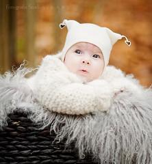 (Lisa Rsten  |  Fotografix Studios) Tags: winter baby color girl norway woods bokeh 105mm f20 nikond3