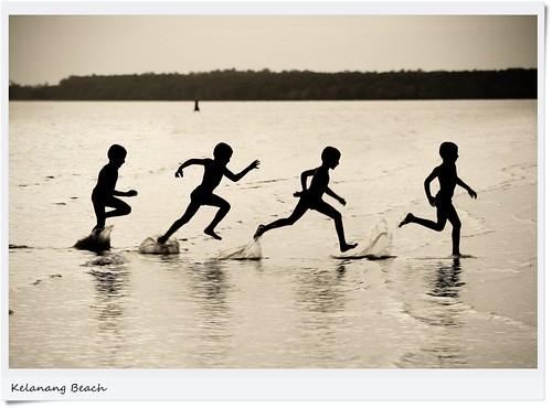 Run Tambi run...