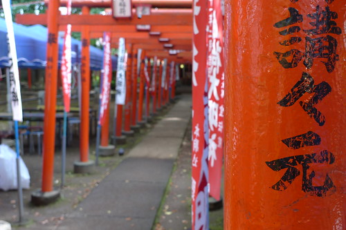 Torii (shrine gates) of Zoshigaya Kishibojin Temple