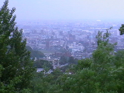 Sapporo City from Top