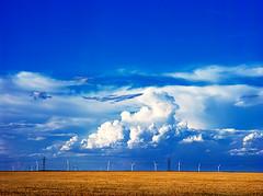 texas-windmills5 (chriscrawfordphoto) Tags: clouds landscape texas wheat bluesky windmills alternativeenergy bigsky vega windpower renewableenergy greatplains wheatfield interstate40 everettroad texaspanhandle oldhamcounty