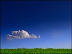 Green ./. Blue (Alexander Steinhof) Tags: blue sky cloud abstract flower green field grass clouds canon eos tour sommer wiese himmel wolke wolken stadt photowalk gras grn simple grassland less regen day199 vihar kelby balu wonderfull sp4449 einfach wenig simpel queste scottkelby schmalkalden pitchforkmusicfestival abstarkt skphoto scottkelbysworldwidephotowalk worldwidephotowalk scottkelbyworldwidephotowalk wwpw scottkelbyphotowalk artofimages photowalk2009 bestcapturesaoi mefi10 schlosswilhelmburg walperloh worldwidephotowalk2009 photowalk09 scottkelbyphotowalk2009 scottkelbyssecondannualworldwidephotowalk vb0709 eyckata