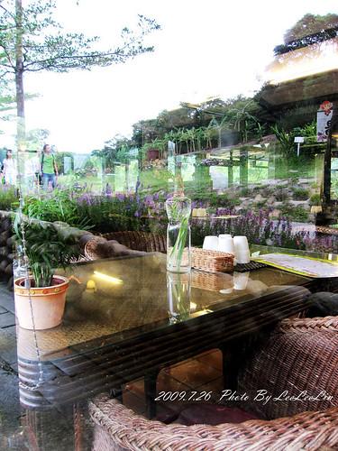 桃園龜山親子景觀餐廳|春天農場園區~隨性遊