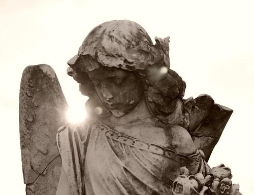 Sunlit angel Sepia