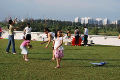 DSC_0332 (matzhuang) Tags: sun grass marinabarrage