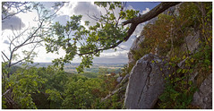 -- (exvivo) Tags: summer mountains nature forest landscape hungary naturereserve bkk