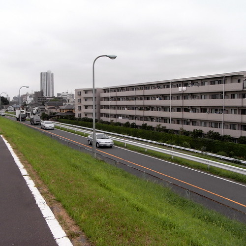 view from Edogawa river 01
