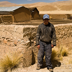 éleveur d'alpacas en mal de travail (40% de l'élevage meure chaque année et la tonte ne peut se faire qu'une fois tous les deux ans), Crucero, Puno, Pérou